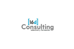 Logo 16D Consulting 300x200