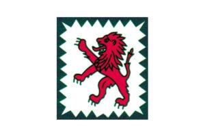 Logo Talleres Divasson 1 300x200